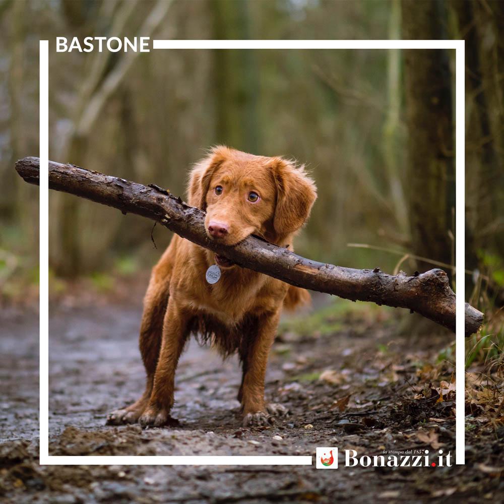 GLOSSARIO_Bastone