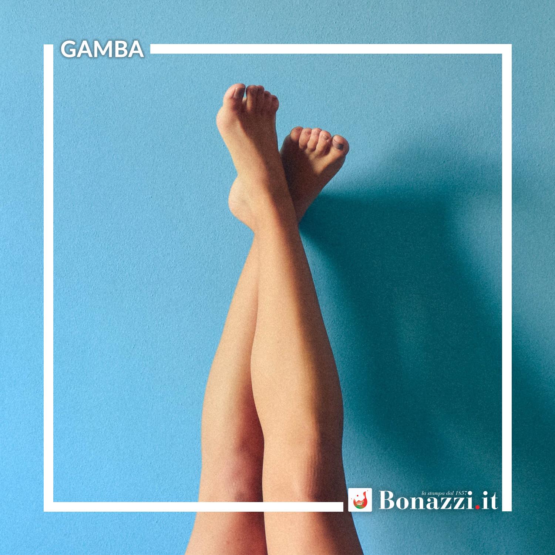 GLOSSARIO_Gamba